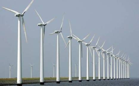 Offshore wind energy hearing draws support for alternative energy, wildlife concerns | Wind Energy and Wildlife | Scoop.it