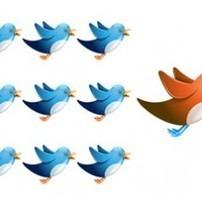 Deux outils pour verifier la qualite de vos followers sur Twitter. | Les outils de la veille | Serial Twitter | Scoop.it