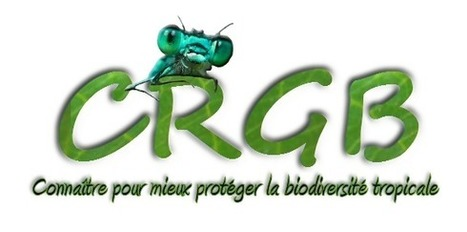 CRGB ONG - Activités   Entomophagy: Edible Insects and the Future of Food   Scoop.it