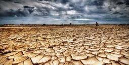 La FAO et «Centre Sud» s'allient contre le changement climatique