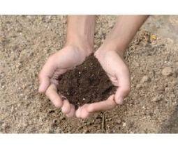 Compo: Ventajas del empleo de la materia orgánica | Permacultura y autosuficiencia | Scoop.it