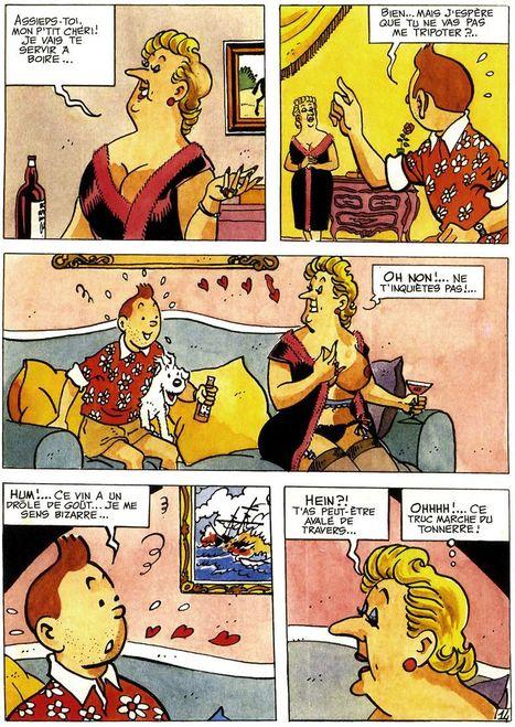 La vie sexuelle de Tintin et autres histoireérotiques | CGMA Généalogie | Scoop.it