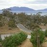 Aussiemandas Tasmania