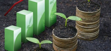 Why the Momentum in Corporate Sustainability Won't Stop | Social Finance Matters (investing and business models for good) | Scoop.it