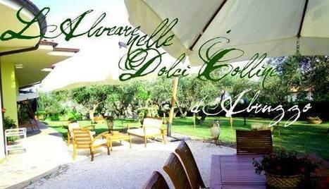 Re-Freshing news!!! | Associazione Alveare - Avventure Culturali | Scoop.it