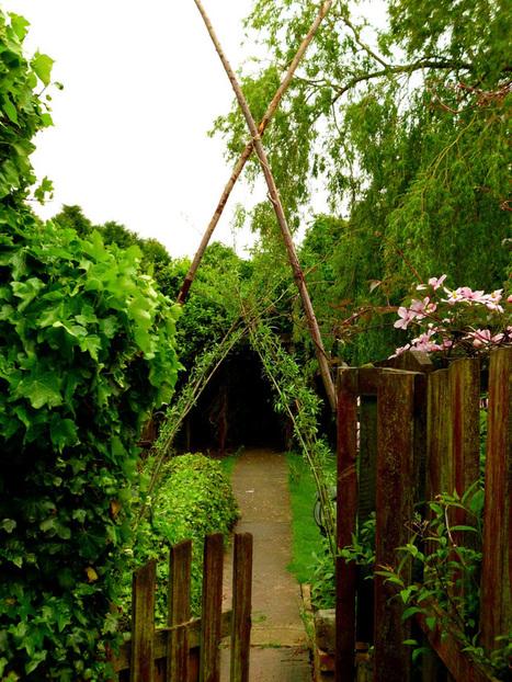 Vegetation, fascination, imagination.....precipitation! | Simple, sustainable living. | Scoop.it