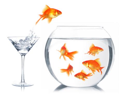 Dynamiques de changement | Management du changement et de l'innovation | Scoop.it