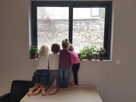 De la curiosité (1/4) | Enseignement, école, apprentissages mutuels, Mutual & Social Learning | Scoop.it