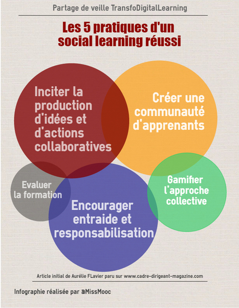 Les 5 points clés d'un Social Learning réussi | transition digitale : RSE, community manager, collaboration | Scoop.it
