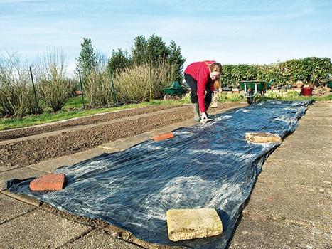 Protéger la terre avant semis et plantation | jardins et développement durable | Scoop.it