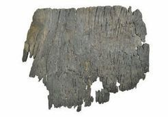 Remains of 8000-year old ship discovered in South Korea - Sowetan LIVE   Archaeology News   Scoop.it