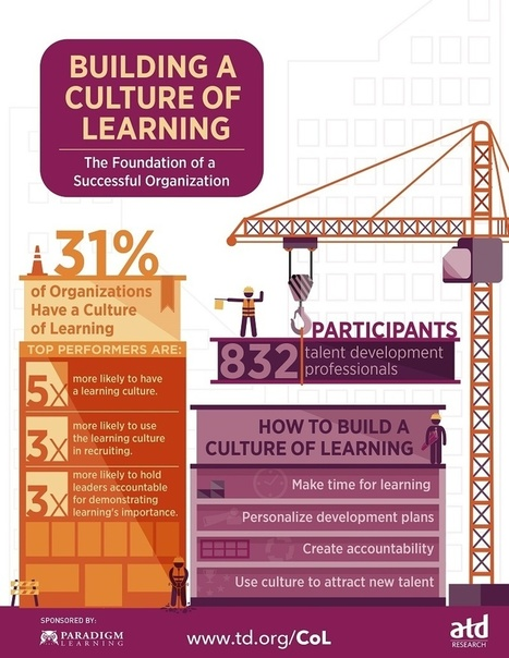 Building a Culture of Learning Infographic - e-Learning Infographics | Educació de Qualitat i TICs | Scoop.it