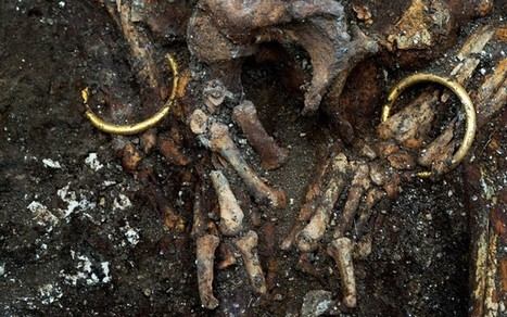 Laid to rest with chariot and solid gold torc | Archaeology News | Scoop.it