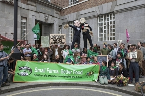 Small scale farmers are feeding our future!   Questions de développement ...   Scoop.it