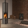 Wood and gas burning stoves and fireplaces