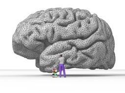 Music And The Brain : Exploring The Interaction Between Music And The Brain | the psychology of music | Scoop.it