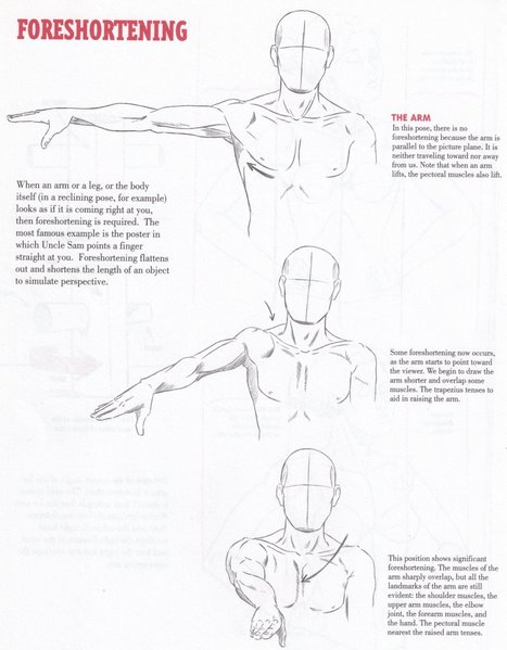 Hands Reference In Drawing References And Resources