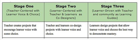 Personalize Learning: The Expert Learner with Voice and Choice | My favorite education articles | Scoop.it