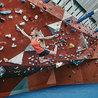 Rock Climbing & Mountaineering