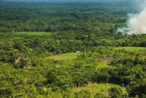 ¿Por qué América Latina es la región con el acceso más DESIGUAL a la tierra? | MAZAMORRA en morada | Scoop.it