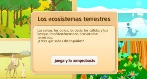 ECOSISTEMASTERRESTRES   Recursos para primaria   Scoop.it