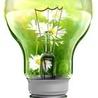 Performance énergétique & solutions innovantes