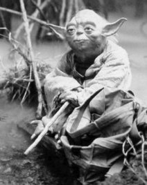 The Leadership Academy: 7 Leadership Lessons from Yoda | Educ8 Tech | Scoop.it