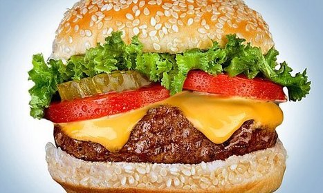 Just one cheeseburger is enough to alter your body's metabolism | Kickin' Kickers | Scoop.it