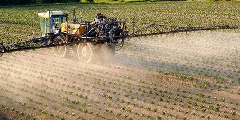 Le jeu trouble de Stéphane Le Foll sur les pesticides | Pour une agriculture et une alimentation respectueuses des hommes et de l'environnement | Scoop.it