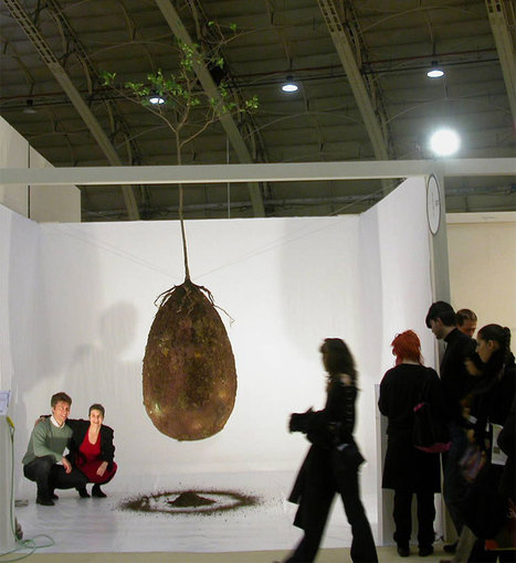 Forget Coffins – Organic Burial Pods Will Turn Your Loved Ones Into Trees | Quirky (with a dash of genius)! | Scoop.it