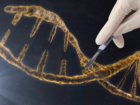 How one scientist is using technology to try and hack his genes to transform his body   STEM Connections   Scoop.it