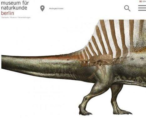 El Museo de Historia Natural de Berlín r...