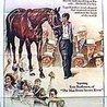 Phar Lap - Wonder Horse