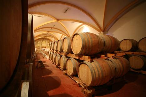 IsraelValley News: 6,8% : Les ventes de tonneaux français (vins) en Israël progressent. | Le vin hors de France | Scoop.it