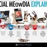Innovation dans les Médias Sociaux