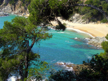 Vos vacances à Lloret de Mar (Costa Brava) 1/2 | Life in Spain ! | Scoop.it