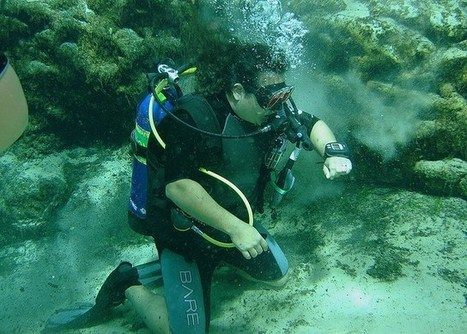 Your Dive Computer Fails: Now What? | All about water, the oceans, environmental issues | Scoop.it