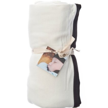 Metallic Anchor with Dalmation Angel Dear Swaddle and Blankie Gift Set