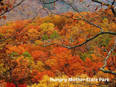 Top 12 Virginia State Parks for Fall Foliage | Motorhome Madness | Scoop.it