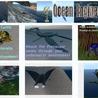 Happenings - Virtual Worlds