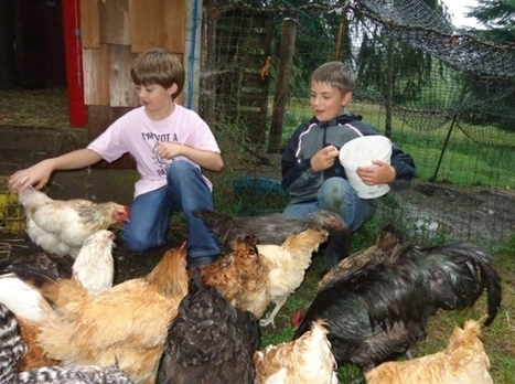 B.C. farmstay an oasis for kids and adults - amid the quacking, clucking, baaing | This Gives Me Hope | Scoop.it