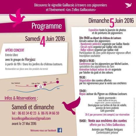 11/04/16 Les Z'elles Gaillacoises : oenotourisme et sauvegarde du patrimoine - OENOSTORY | Images et infos du monde viticole | Scoop.it