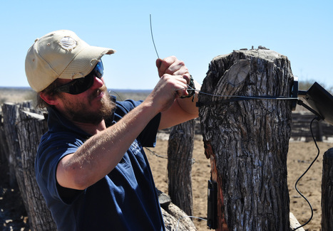 Unsung Conservation Heroes - Spotlight on Marnus Roodbol | Wildlife Conservation: People and Stories | Scoop.it