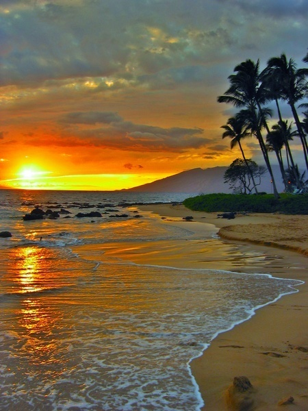 Maui....... | LOVELY | Scoop.it