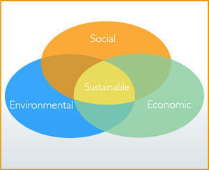 Indoor Air Quality for Sustainable Building | Healthy Homes Chicago Initiative | Scoop.it
