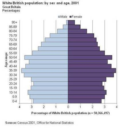 ethnicity.ac.uk - Facts and figures about ethnic difference and inequality in the UK | Mrs. Watson's Class | Scoop.it
