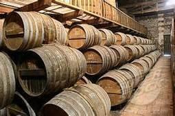 Le Cognac a malgré tout la gnaque | Petit détour en Charentes au pays du Cognac | Scoop.it