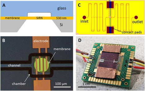 Scientists develop new kind of internal combustion microengine 100 microns wide   Amazing Science   Scoop.it