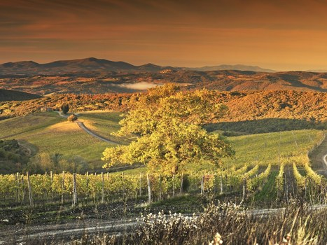 Why you should visit Tuscany or Italy in Winter | Italia Mia | Scoop.it