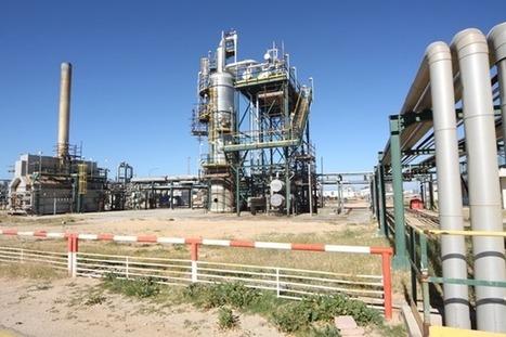 Libya Shuts Down Largest Oilfield After Rebel Attacks | Saif al Islam | Scoop.it